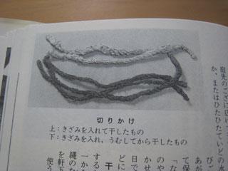 sonet1108014.jpg